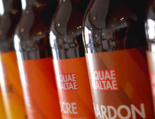 Arti's#16 Aquae Maltae : bières artisanales bio